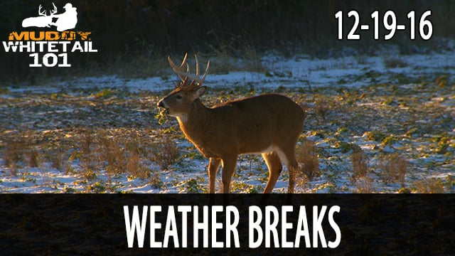 Hunting Weather Fronts and Breaks